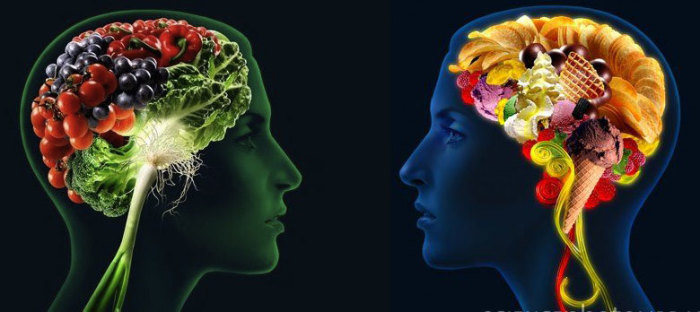 brain-food1