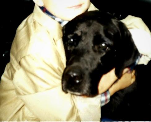 Как LCHF спасло мою собаку от эпилепсии и ожирения.