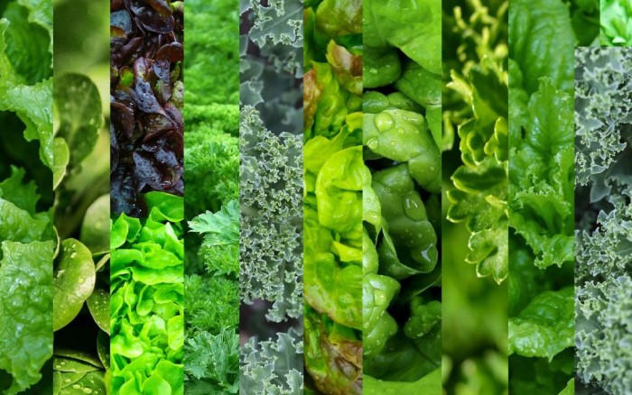 Mixed-Greens-2-1080x675