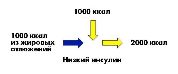 _CICO6_ru