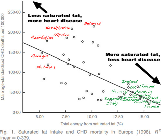 cvd and fat