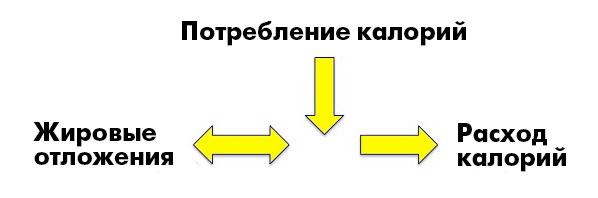 _CICO1_ru