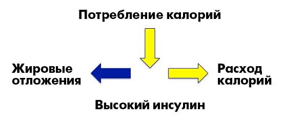 _CICO3_ru
