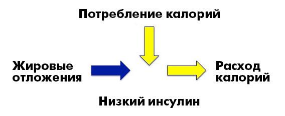 _CICO5_ru