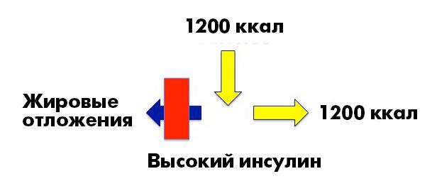 _CICO7_ru
